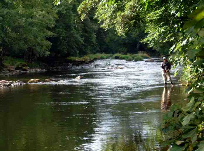 Salmon fishing_Caddaford Pool