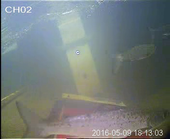 vlcsnap-2016-06-01-12h53m31s628